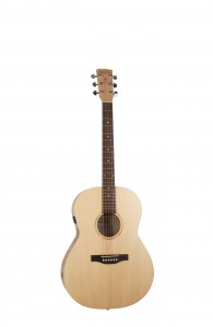 39739_trek_folk_solid_spruce EQ
